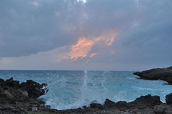 2009-10-07_3297.jpg