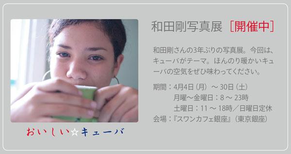 swan-0403.jpg